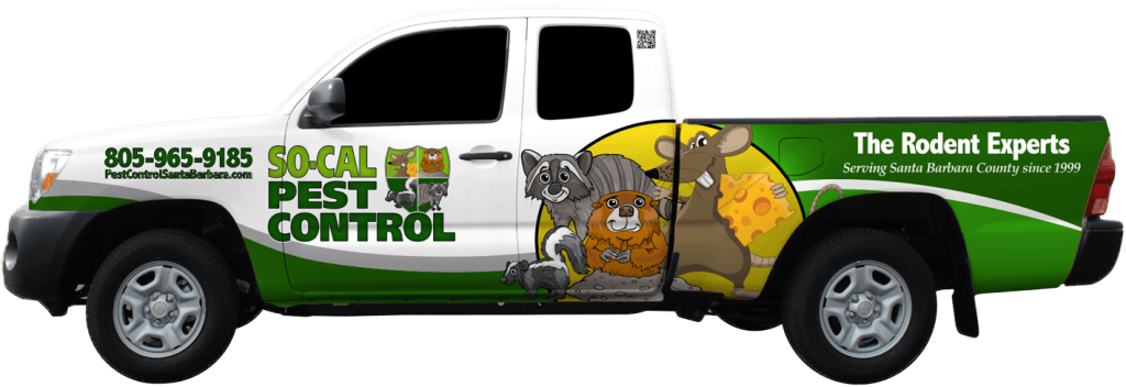 So Cal Pest Control Serves Santa Barbara California